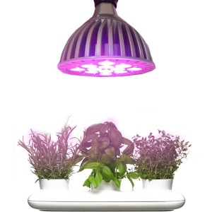 led-grow-lights-herbs